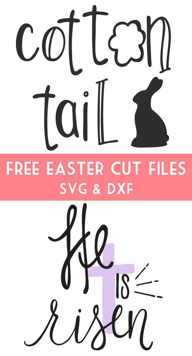 Download Cotton Tail Cut File - Free cut file for Silhouette and ...
