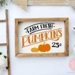 15 Fall Pumpkin DIY Ideas from PoofyCheeks.com